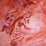 Revêtements décoratifs sols & murs Prades - conflent 66. Artisan décorateur : chaux
